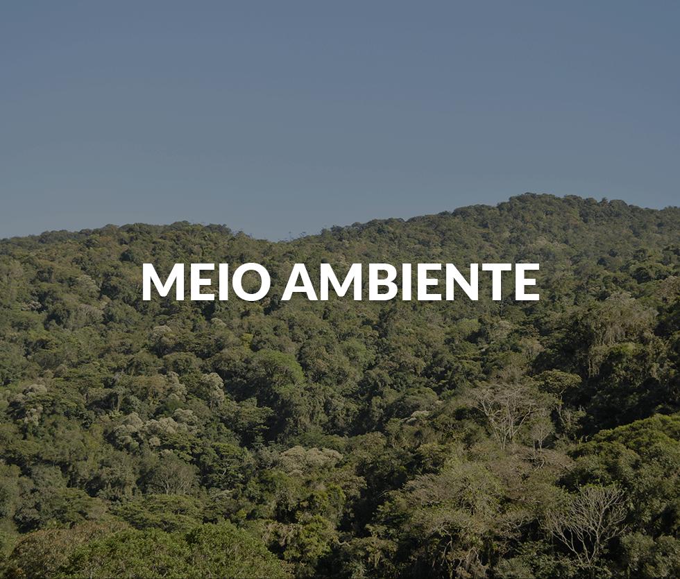 meio-ambiente-2